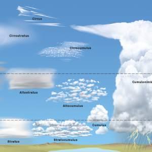illustration der wolkenfamilien